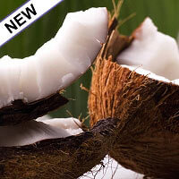 Coconut Pulp Co2 Extract Organic