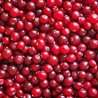 Cranberry Seed Oil Organic, Extra Virgin