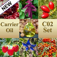 Carrier Oil Co2 Set, 15mL