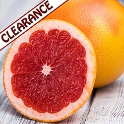 Grapefruit Ruby Red Essential Oil CLEARANCE