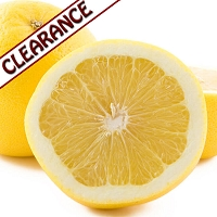 Grapefruit White Essential Oil CLEARANCE