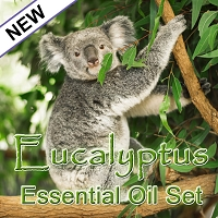 Eucalyptus Essential Oil Set, 15mL