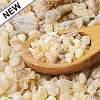 Frankincense carterii Resin