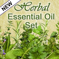 Herbal Essential Oil Set, 5mL