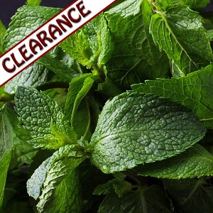 Spearmint Essential Oil CLEARANCE