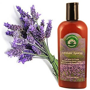 Lavender Synergy Body Lotion 8.4 oz