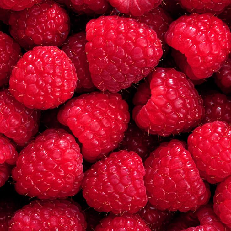 Red Raspberry Seed Oil Organic