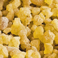 Frankincense frereana Essential Oil (Oman)