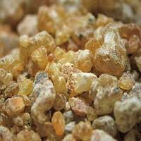 Frankincense carterii Essential Oil (Somalia)