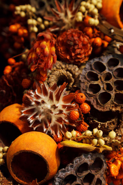 Holiday Potpourri Recipe