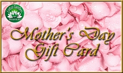 Mother's Day e-Gift Card