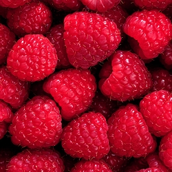 Red Raspberry Seed Oil Organic
