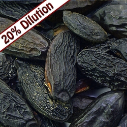 Tonka Bean Absolute 20% Dilution