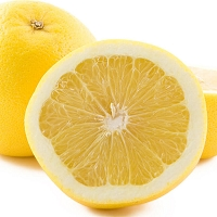 Grapefruit White Essential Oil