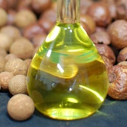 Sandalwood Seed Co2 Extract