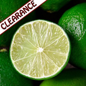 Lime Essential Oil (Persian) CLEARANCE