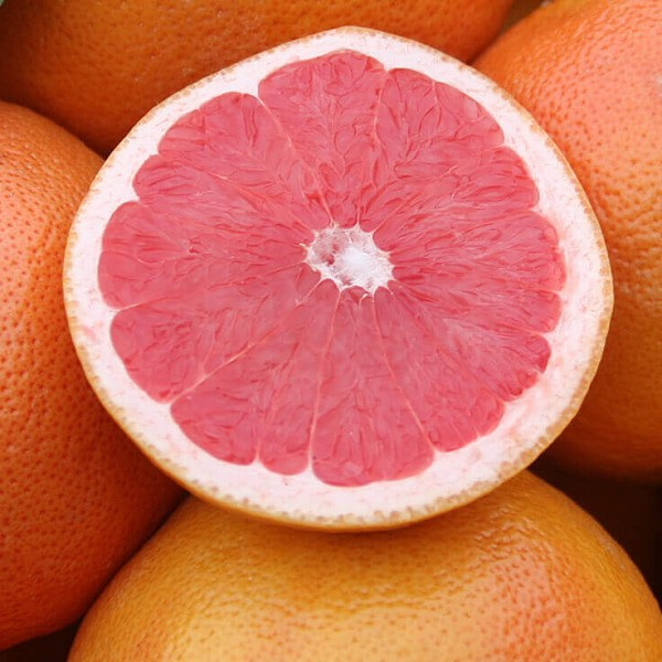 Grapefruit Pink Essential Oil, 1 mL Sample