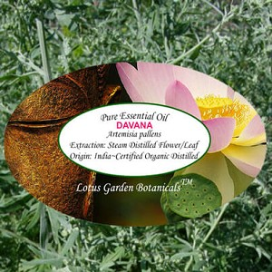 Davana Organic Essential Oil, 1 mL Sample
